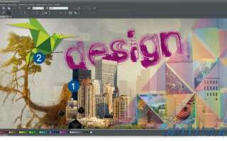 Xara Photo & Graphic Designer 11 почти даром!